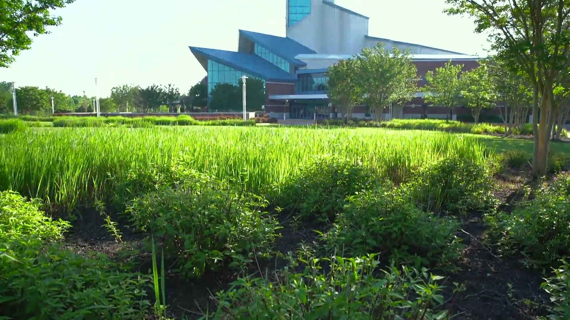 Level Green  Landscaping- First Baptist testimonial case study video