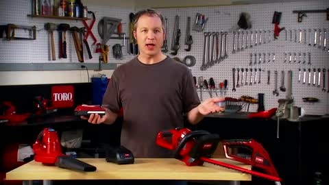 20V Lithium Ion Battery Yard Tools: Toro Bare Tools