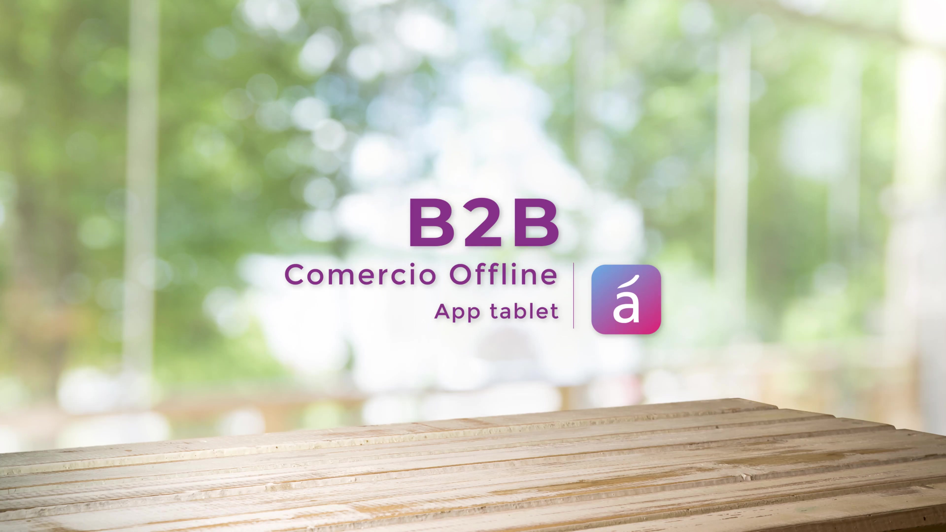 B2B Comercio Offline App tablet_10092020