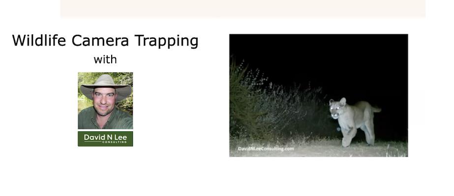 L&L-08-wildlife-camera-trapping-webinar-on-demand