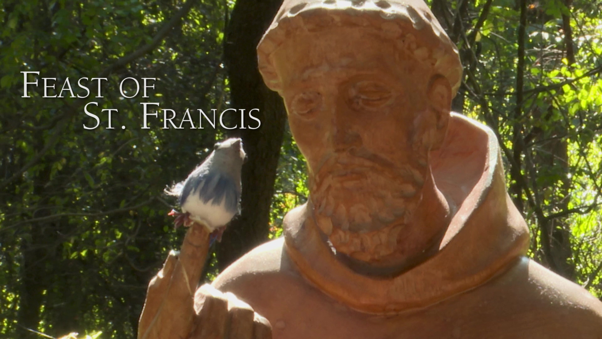 Feast of St. Francis Final