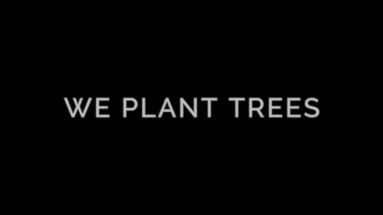 FB_Webasto x One Tree Planted - Reforestation
