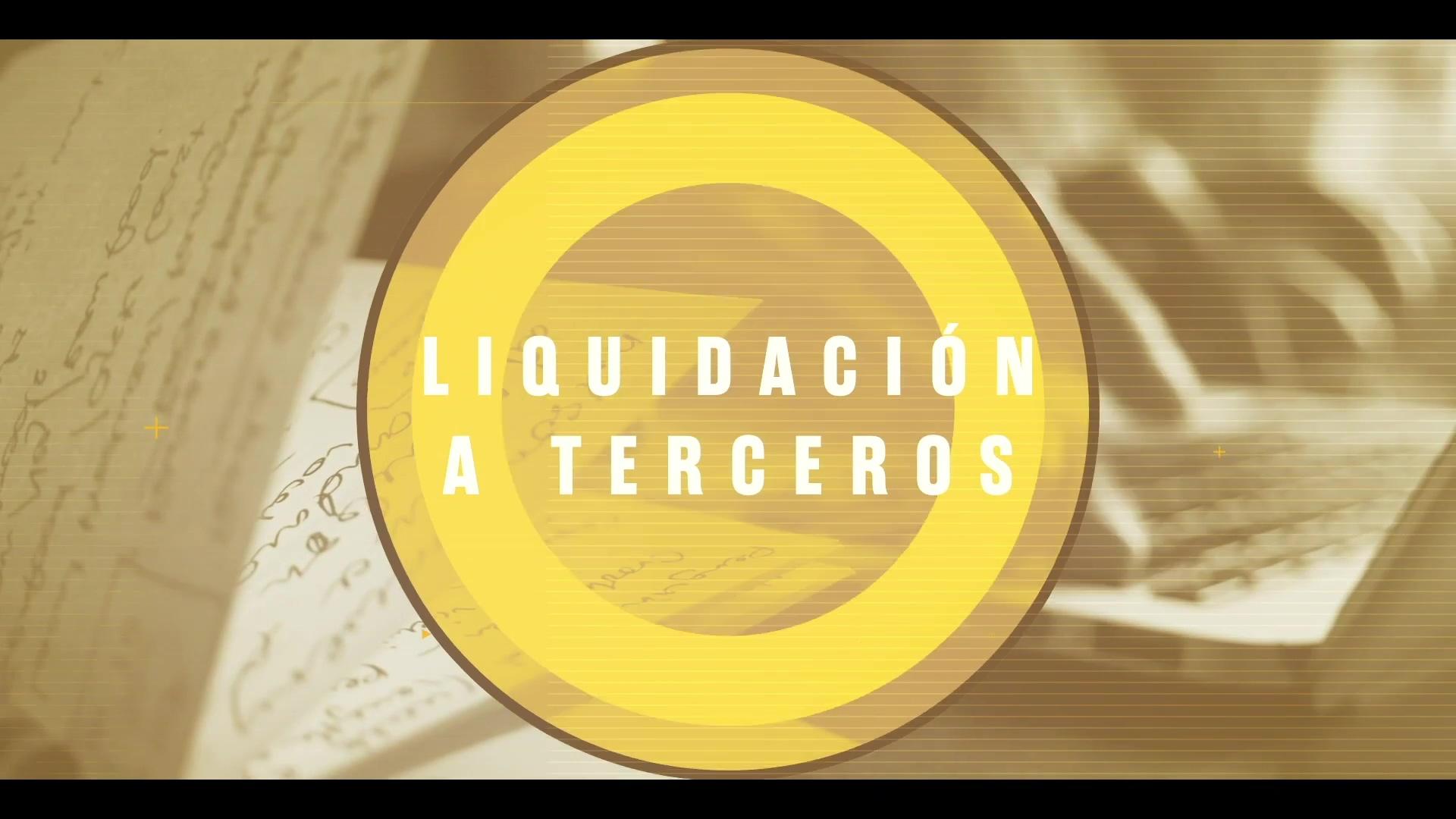 PUB_Liquidacion a Terceros ALTA