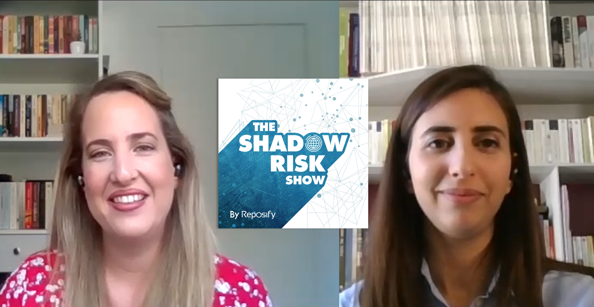 THE SHADOW RISK SHOW - #1 Exposed Dev Index Pages