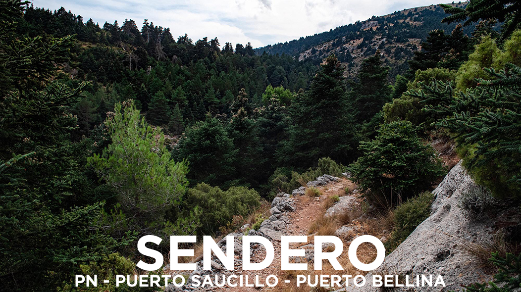 PN-PUERTO SAUCILLO-PUERTO BELLINA_EN