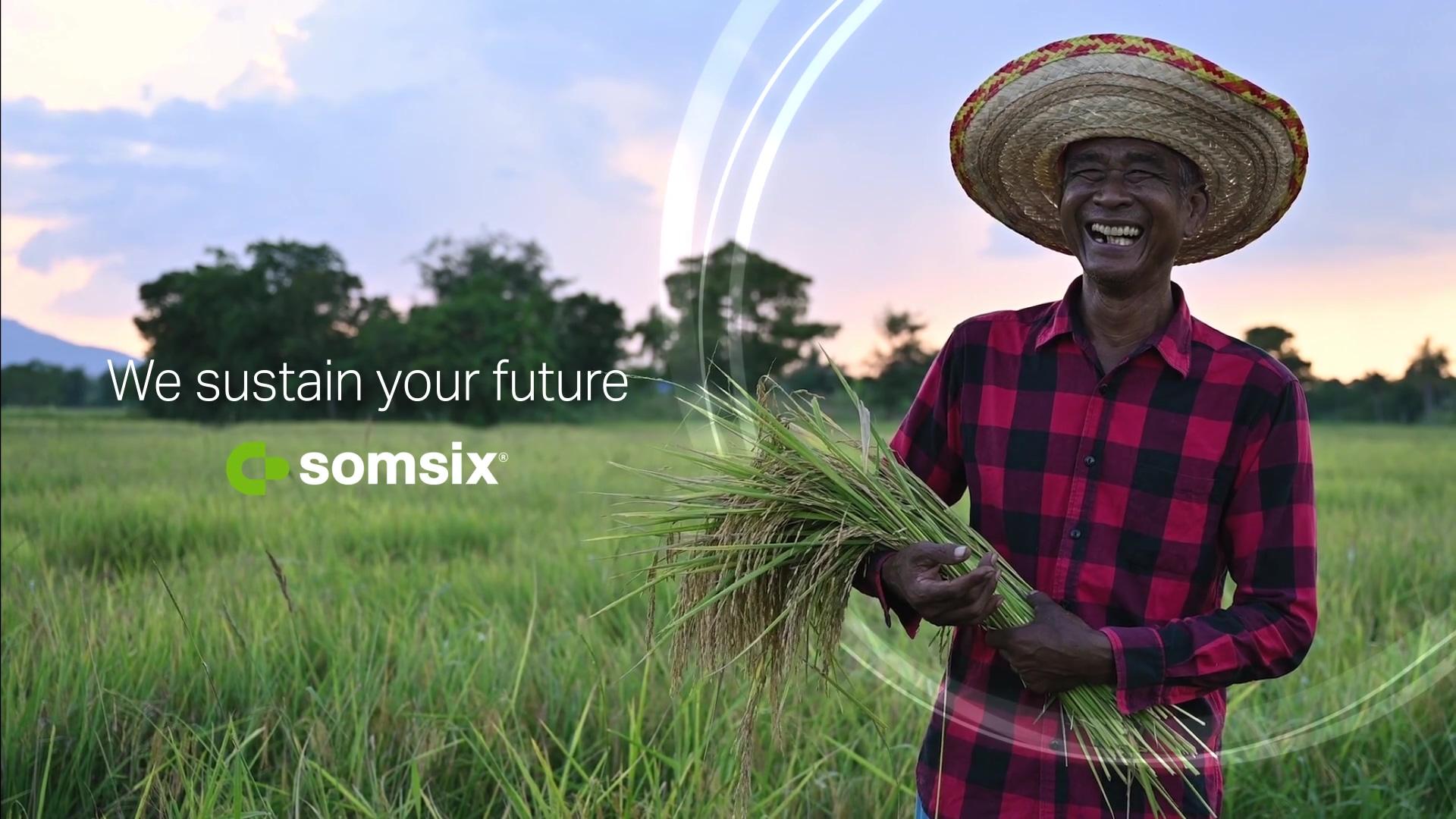 SomSix - Rice V5