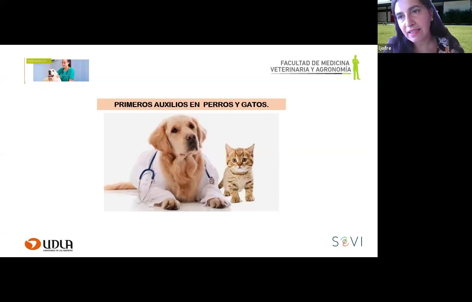 Taller de primeros auxilios veterinaria diciembre 2020