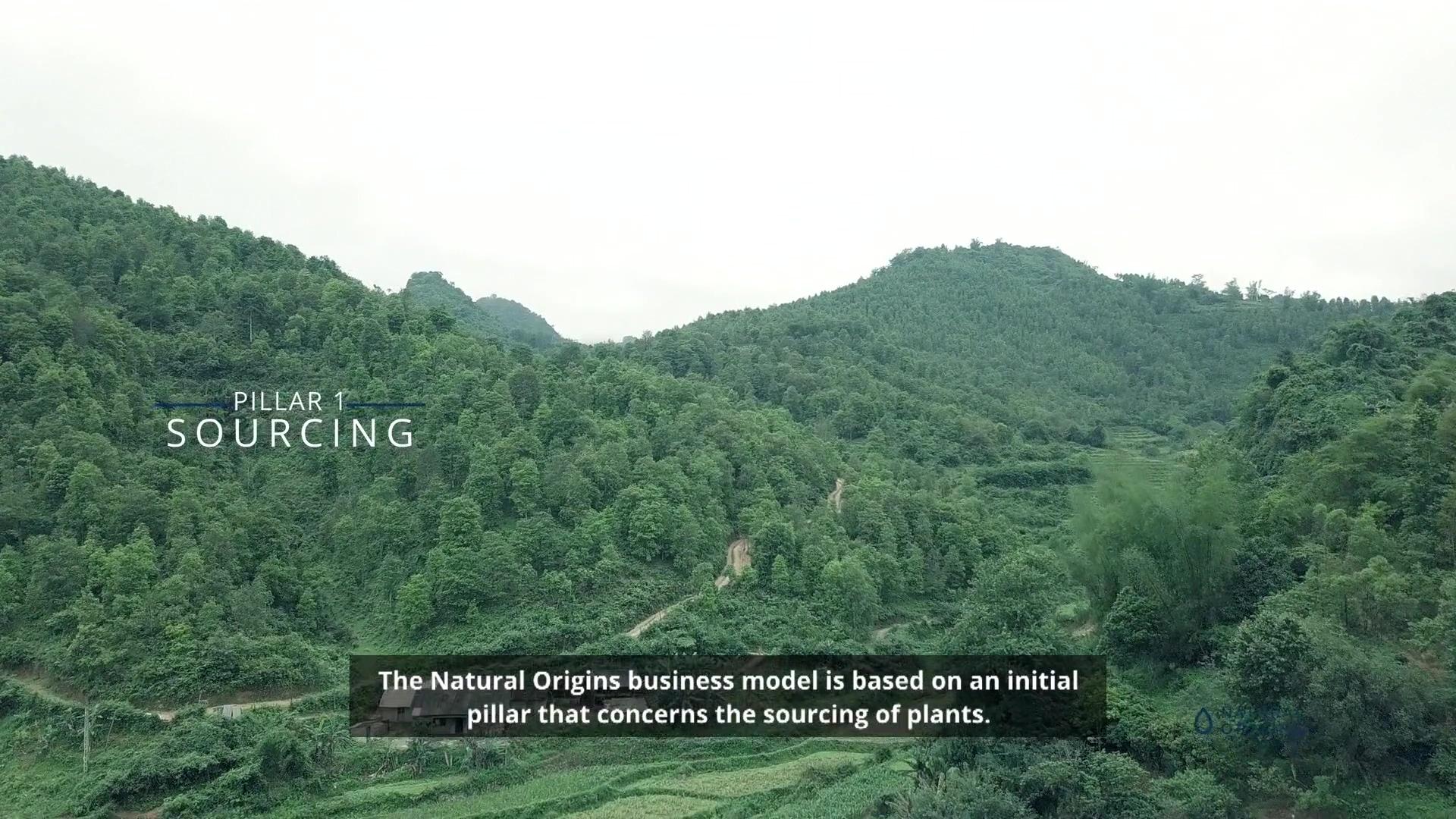 maxime-angelucci-s-interview-natural-origins-pillars