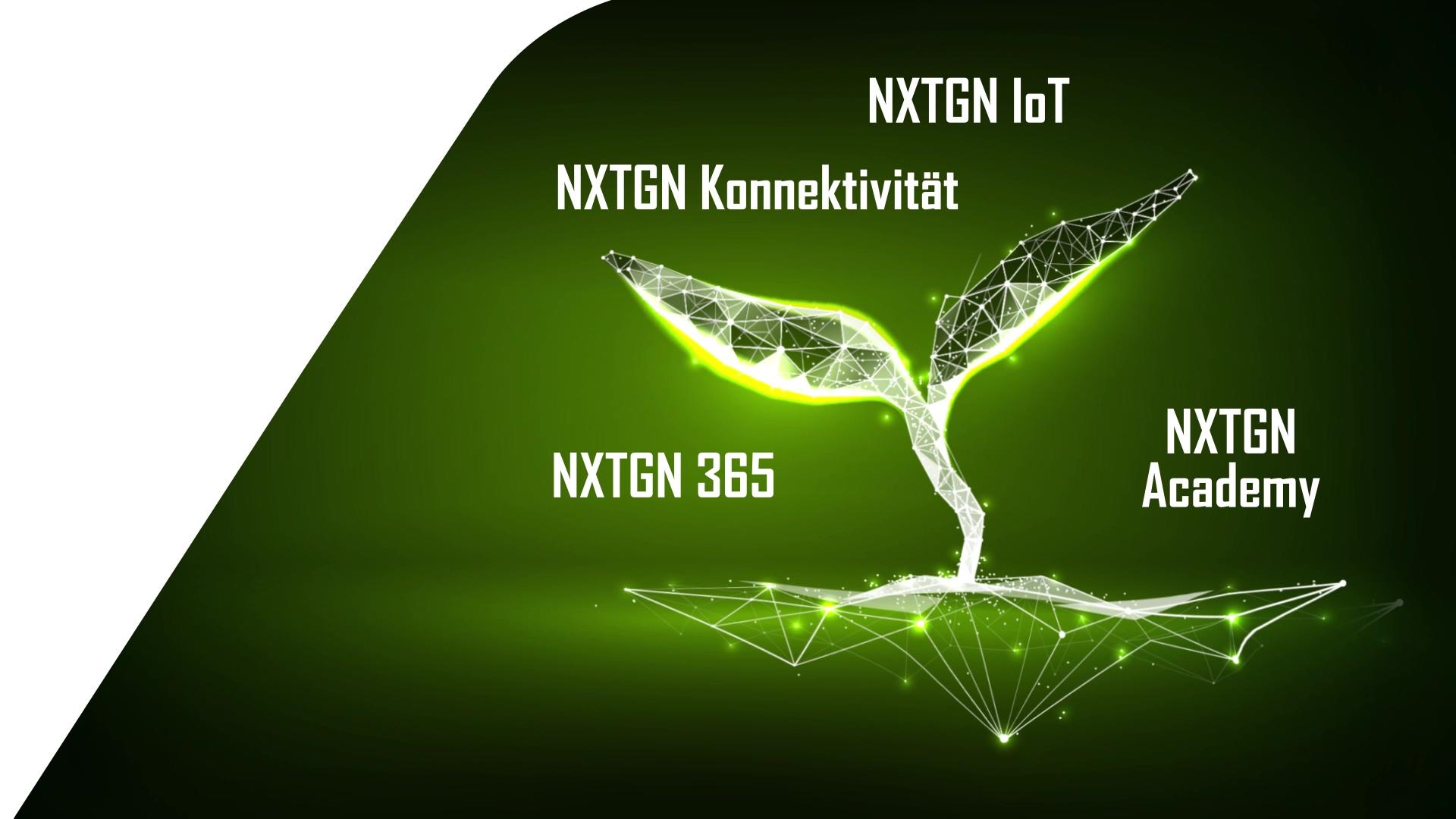 NXTGN-Company-4-Ebenen