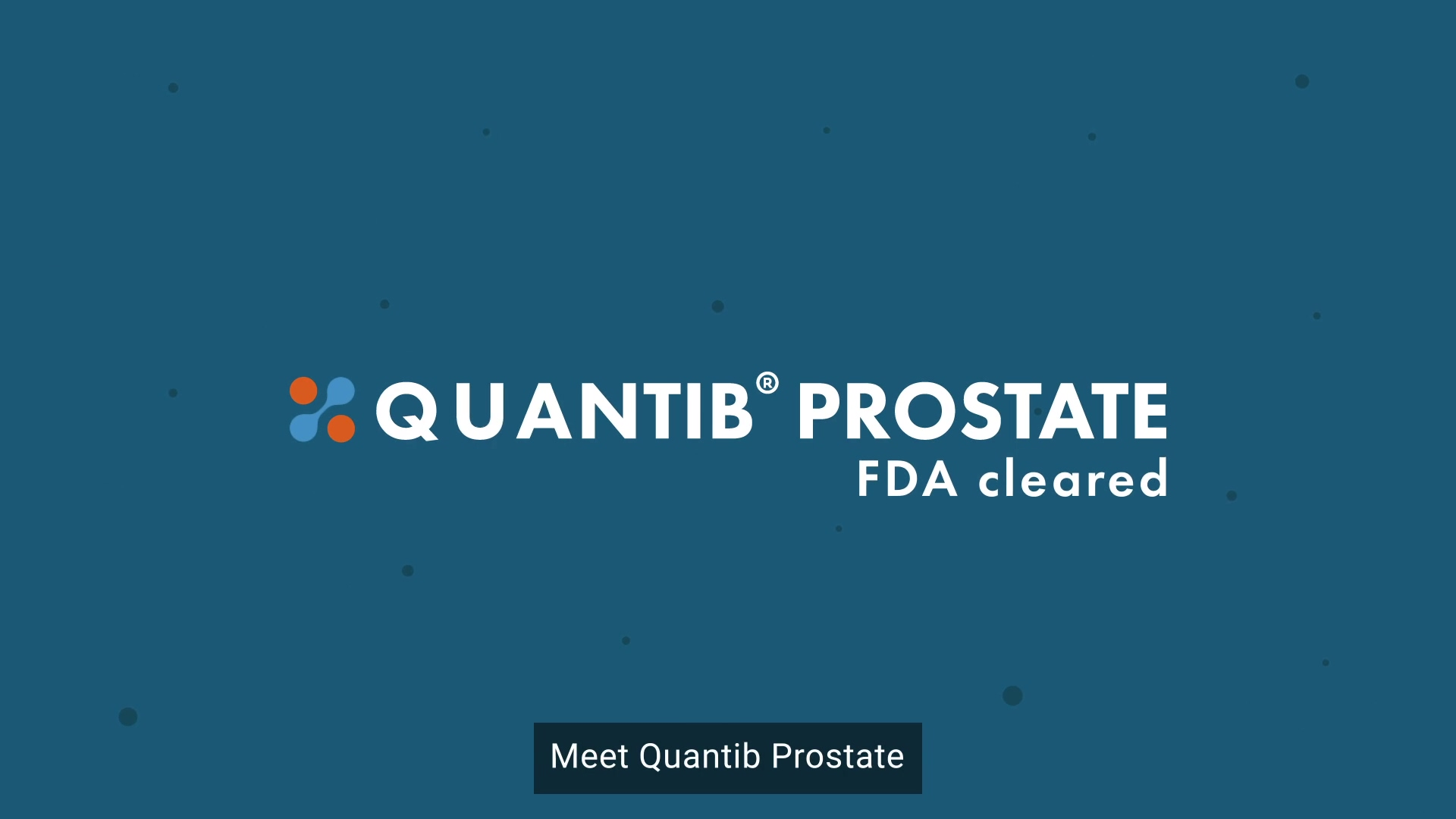 Quantib Prostate movie