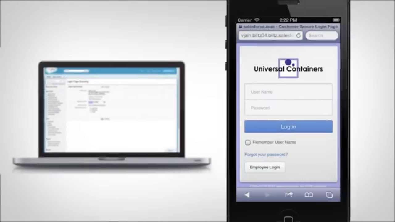 Salesforce Lightning Platform Overview Demo - Video Library
