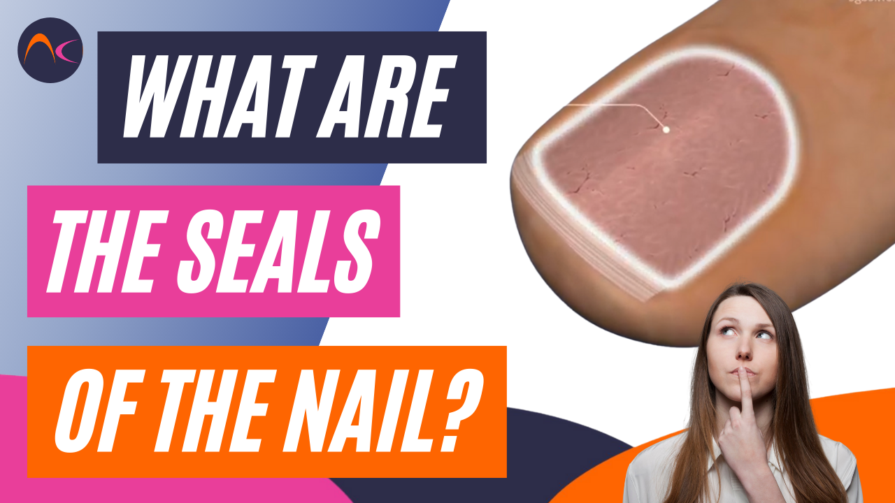 What are the seals of the nail unit