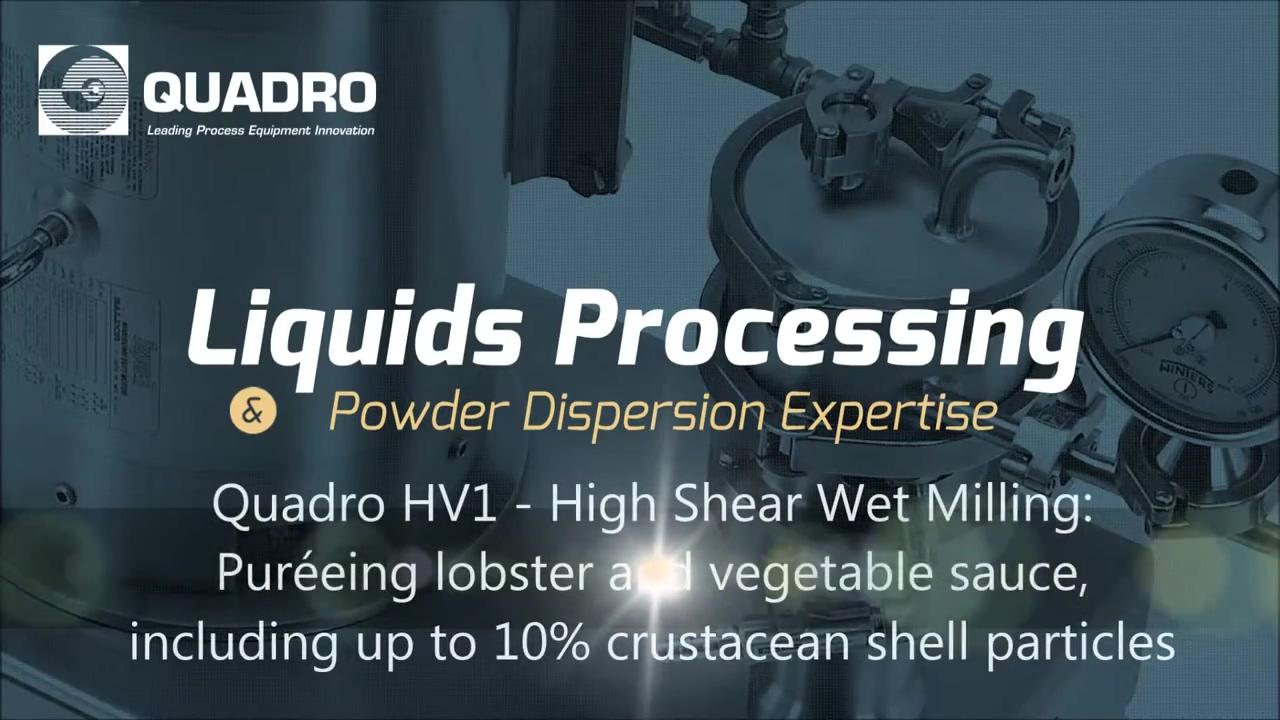 Quadro HV - Smooth Lobster & Vegetable Puree