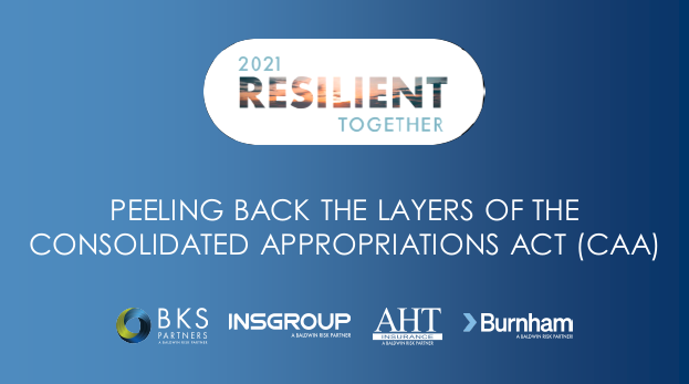 Peeling Back the Layers of the Consolidated Appropriations Act (CAA)_1