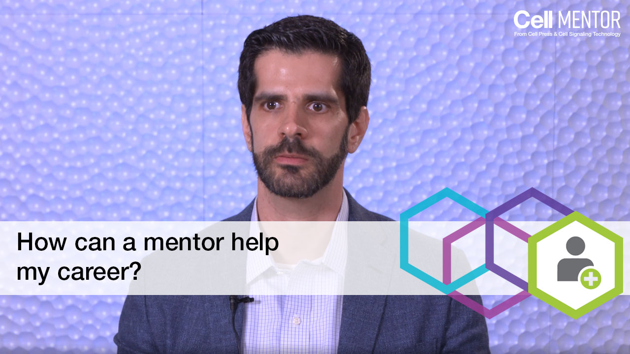 Get Hired - How can a mentor help my career