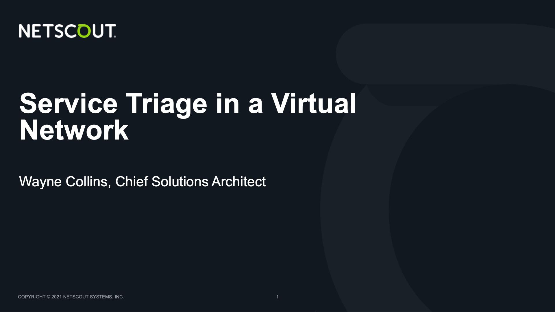 Service Triage in a Virtual Network