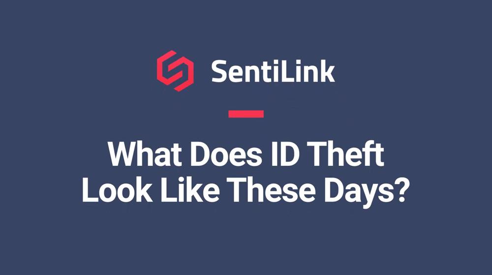 Sentilink_Webinar_ID Theft_V2-1