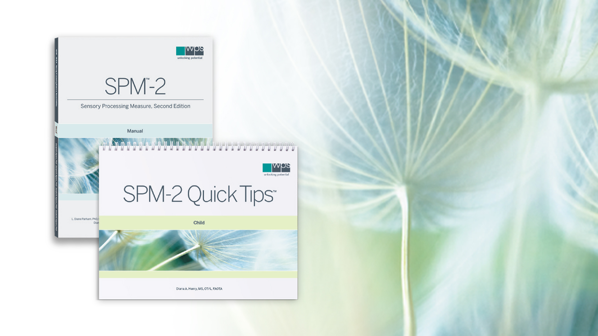 Behind the Scenes of the SPM-2 Assessment & SPM-2 Quick Tips