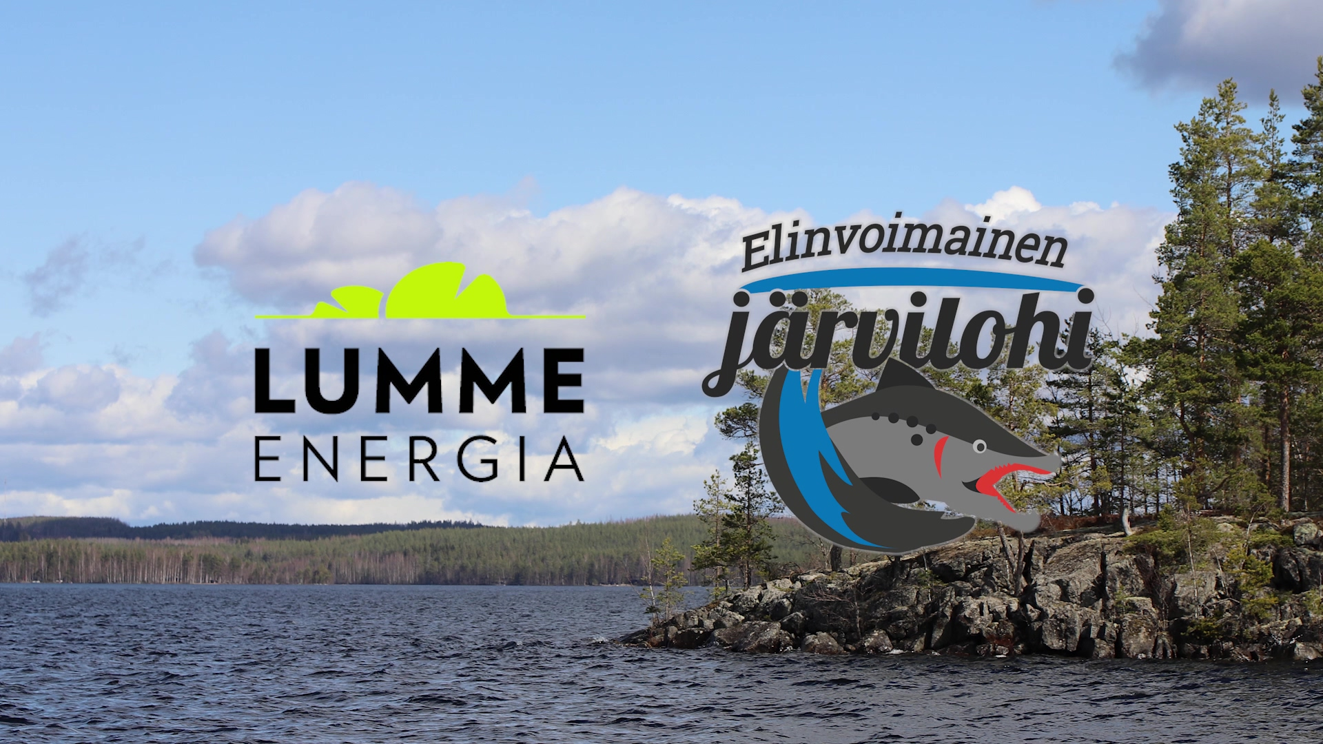 Elinvoimainen järvilohi kesäkuu 2021