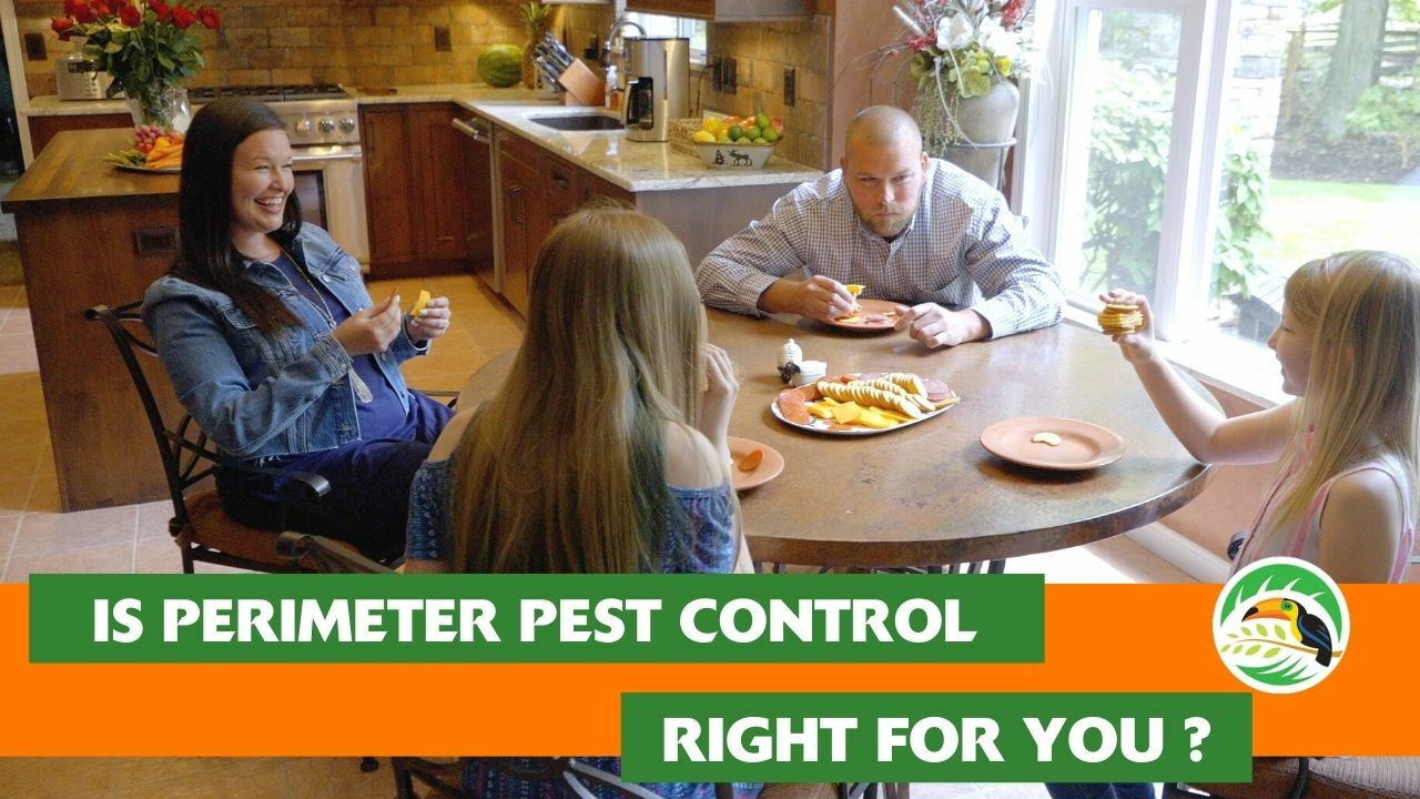 Oasis Turf and Tree - Perimeter Pest Control