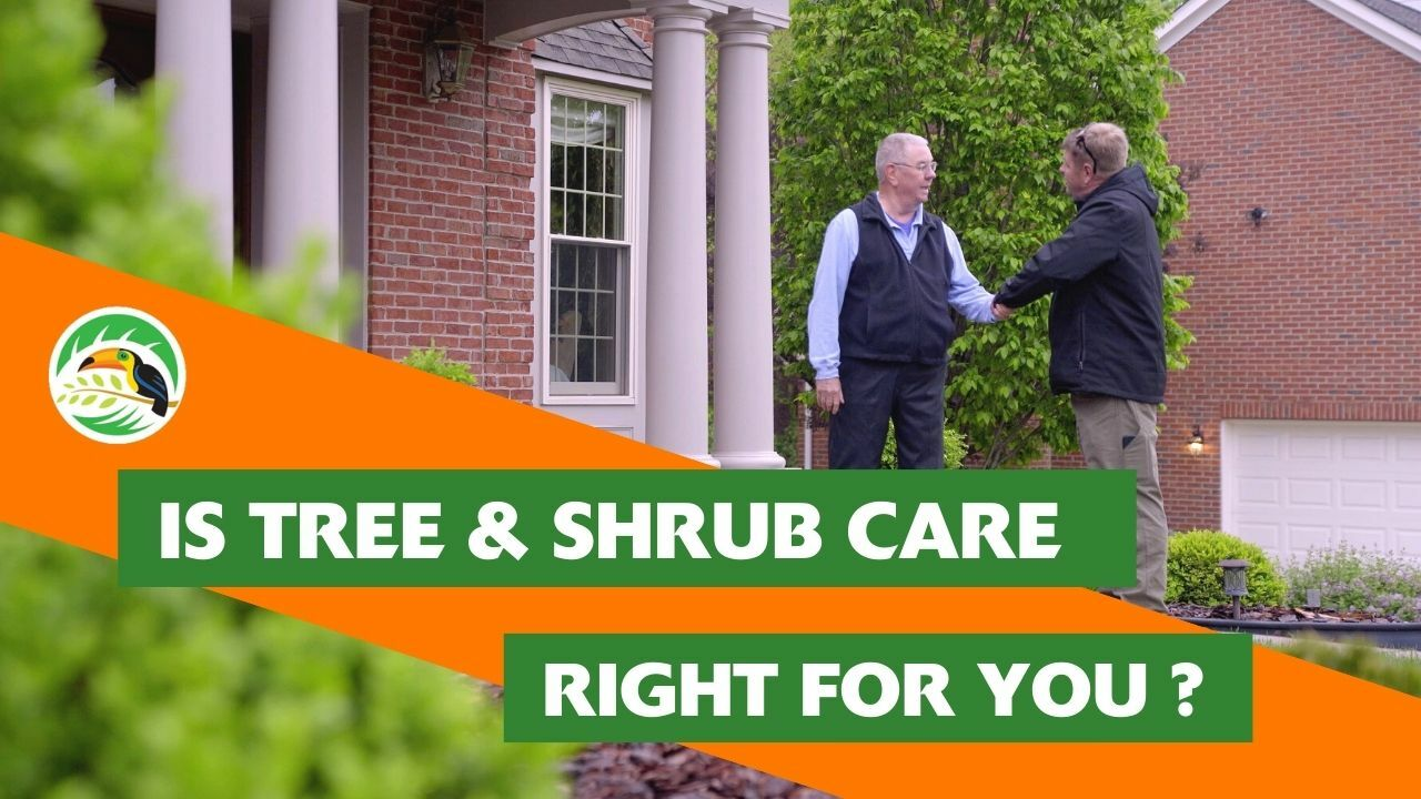 Oasis Turf and Tree - Tree and Shrub Care