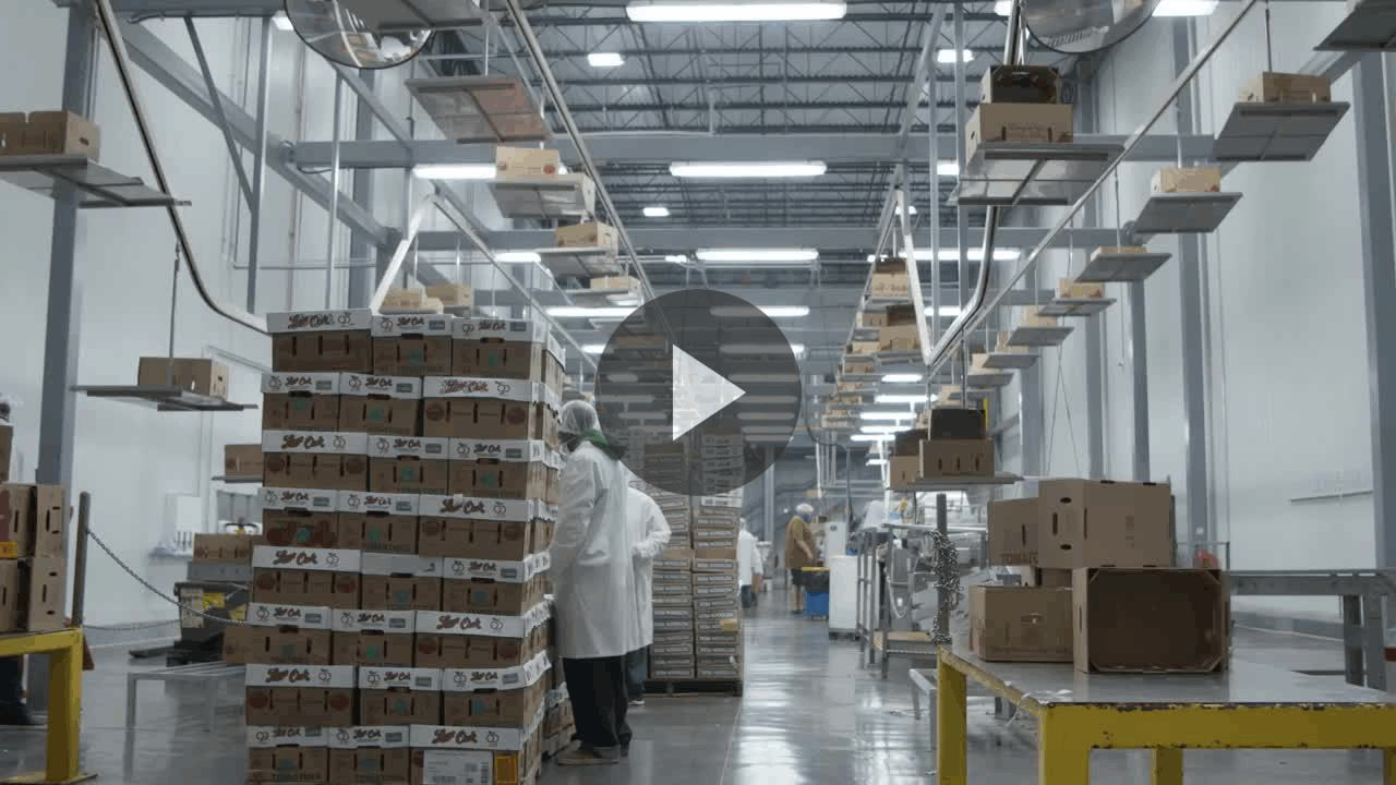 Castellini Increases Accuracy and Productivity with Honeywell