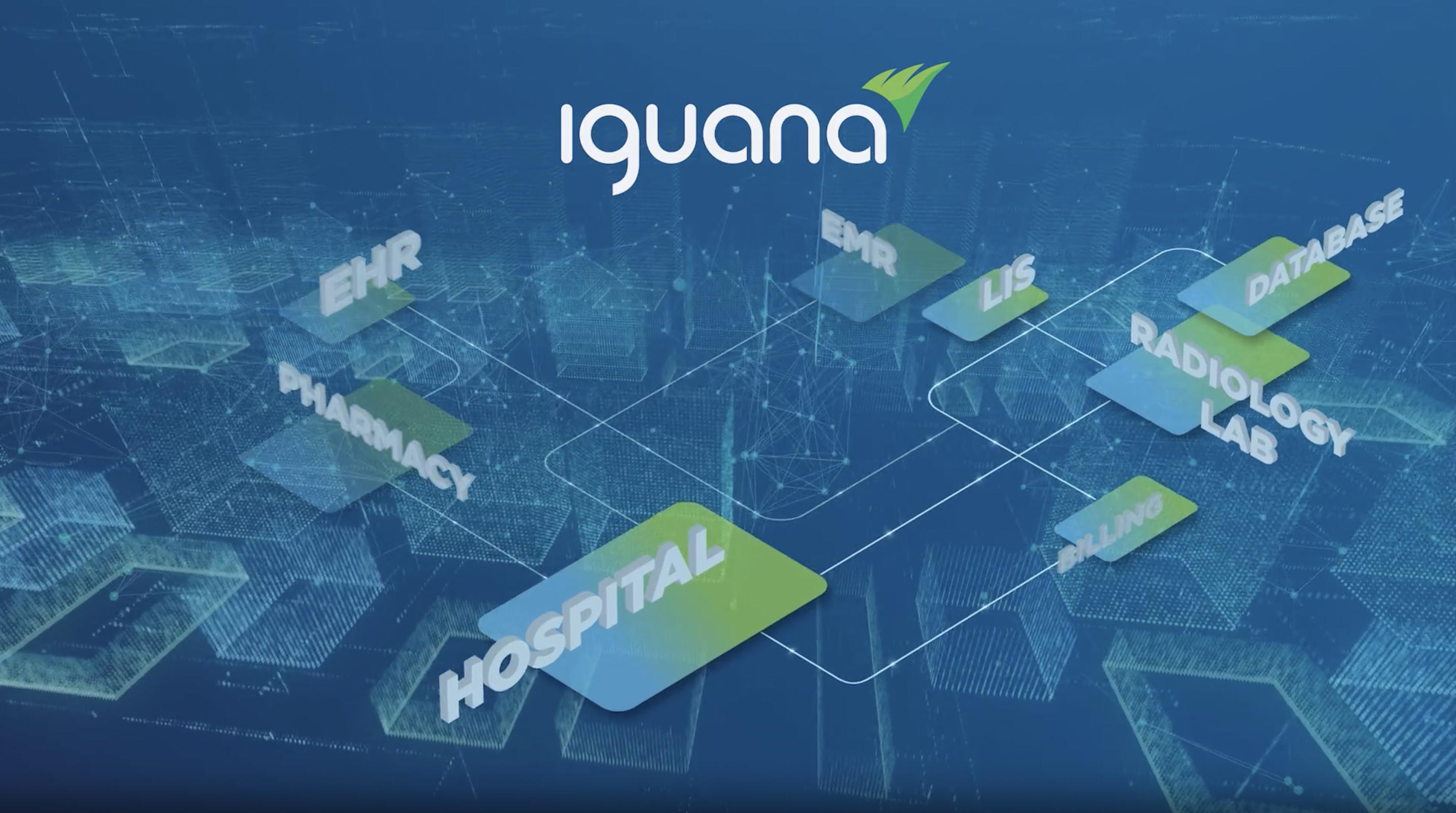 Iguana overview video