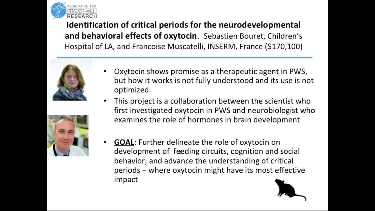Fall 2018 - Oxytocin