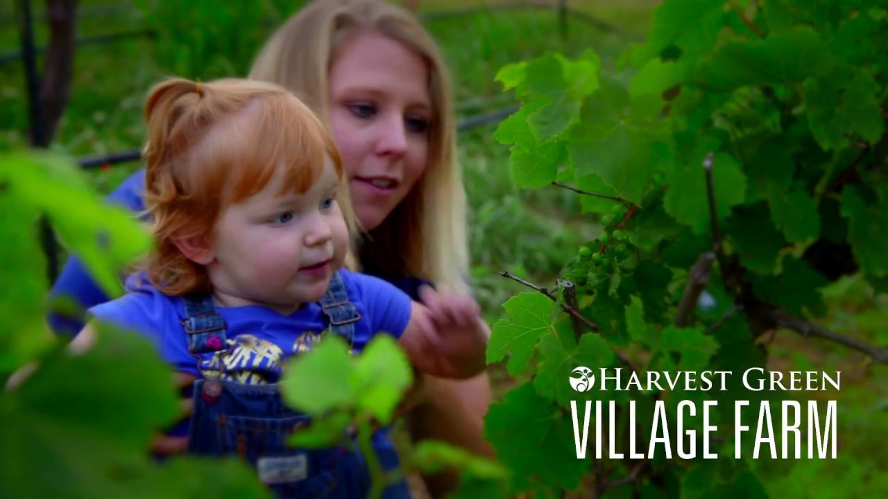 Harvest Green Community