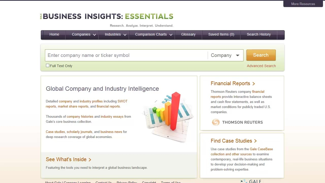 Business Insights: Essentials - Basics Thumbnail