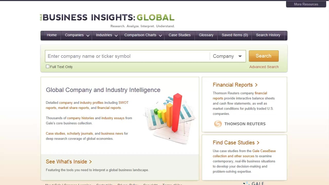Business Insights: Global - Basics Thumbnail