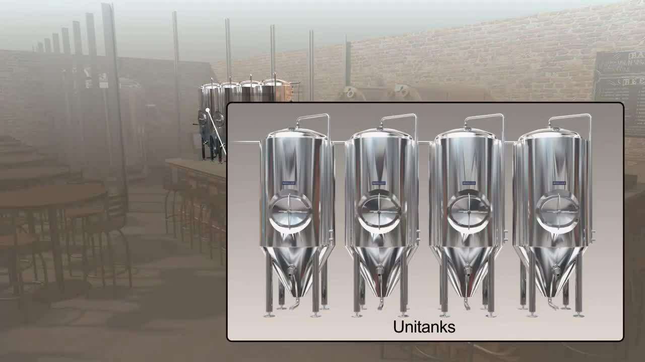 ANIMATION - Standard Brewhouse with Cellar and Serving Tanks - Phase 1