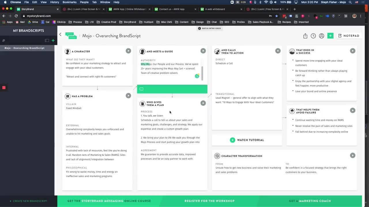 StoryBrand - Overarching Mojo BrandScript [Team Walkthrough] (1)