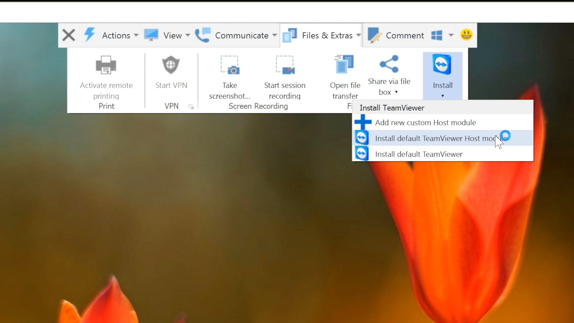 TeamViewer 11 - Remotely Install Host Module