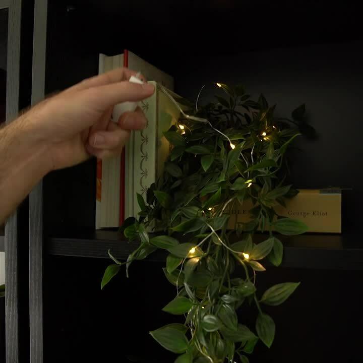 Fairy-String-Lights-Wish