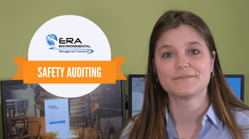 Safety Auditing Video (complete v2)