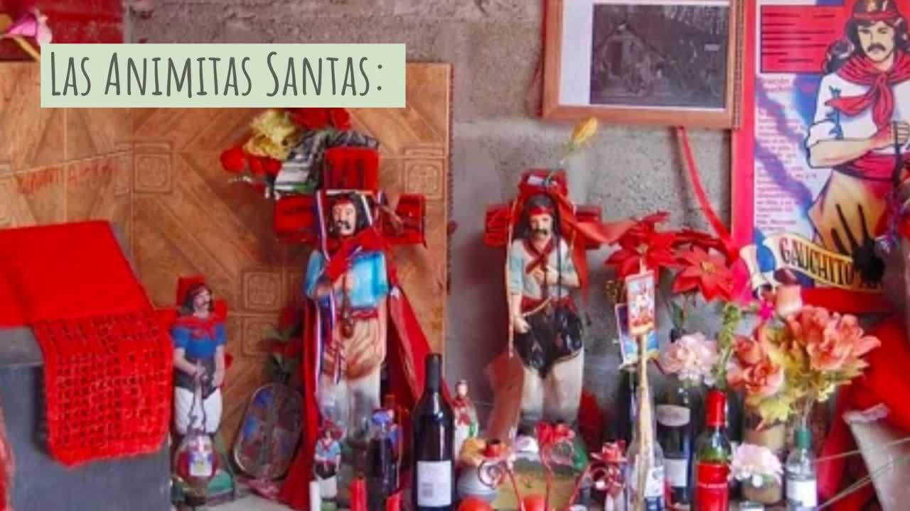 Tour_por_la_Patagonia