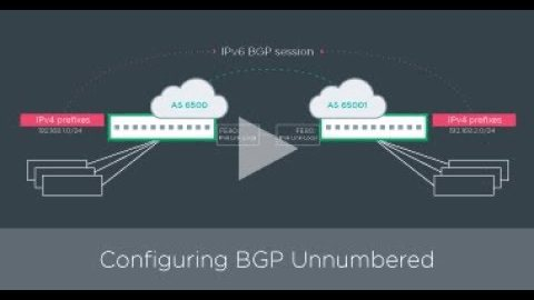 Getting Started: Configuring BGP unnumbered