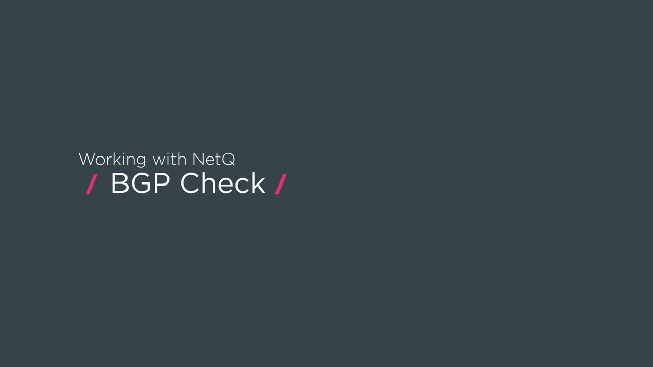 Working with NetQ: BGP check