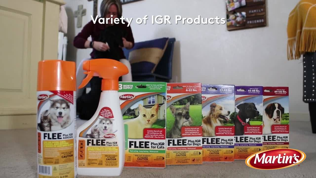 Complete Flea Protection-1