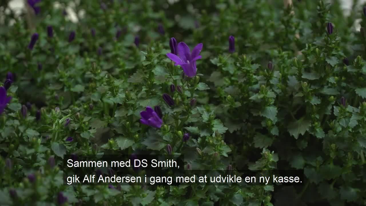 Naturlige bakker fra DS Smith til planter og blomster_tekstet