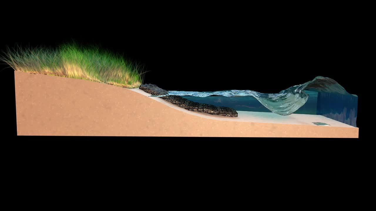 Shoreline-Protection-with-Grass