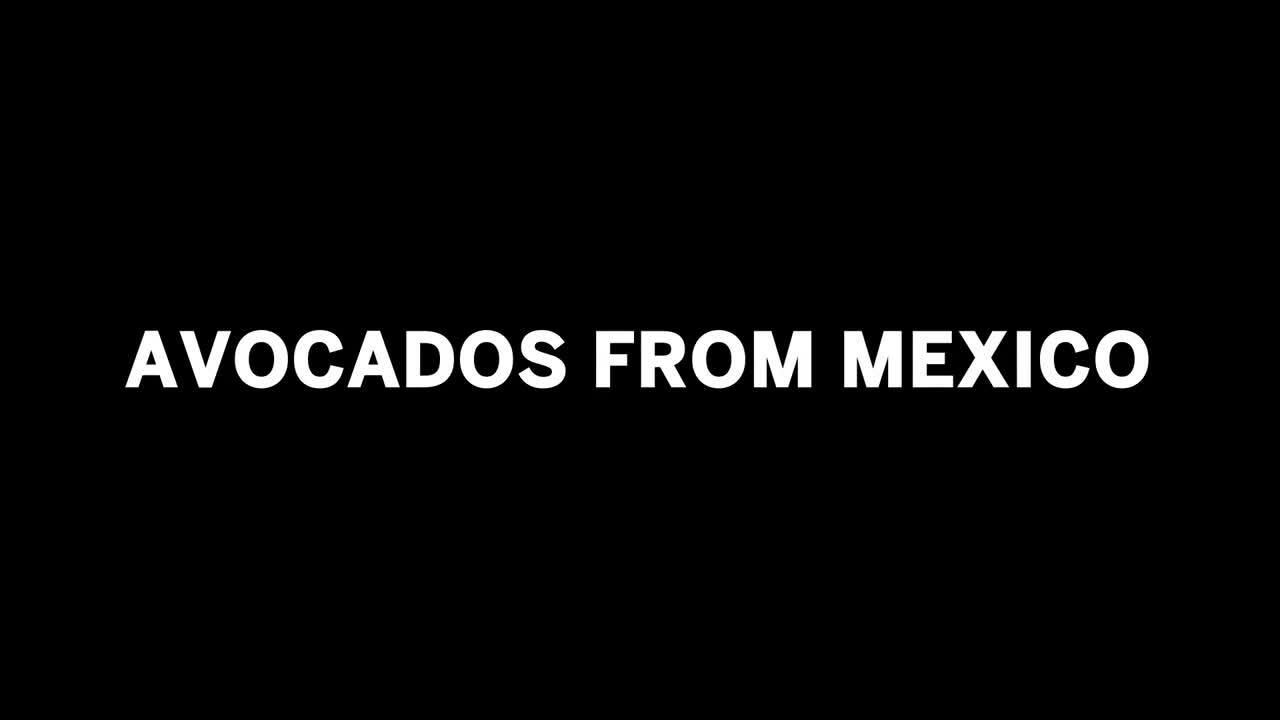 Marketing-Avocados-More-Effectively-with-SAP-Business-ByDesign-3