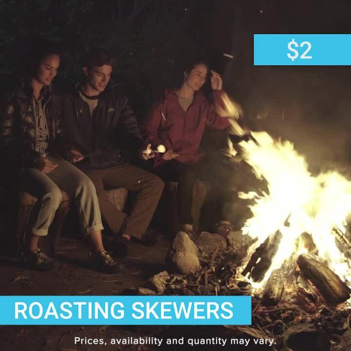 Wish_Camping_Roasting_Skewers