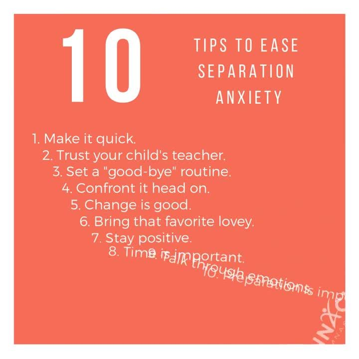 Separation Anxiety Tips