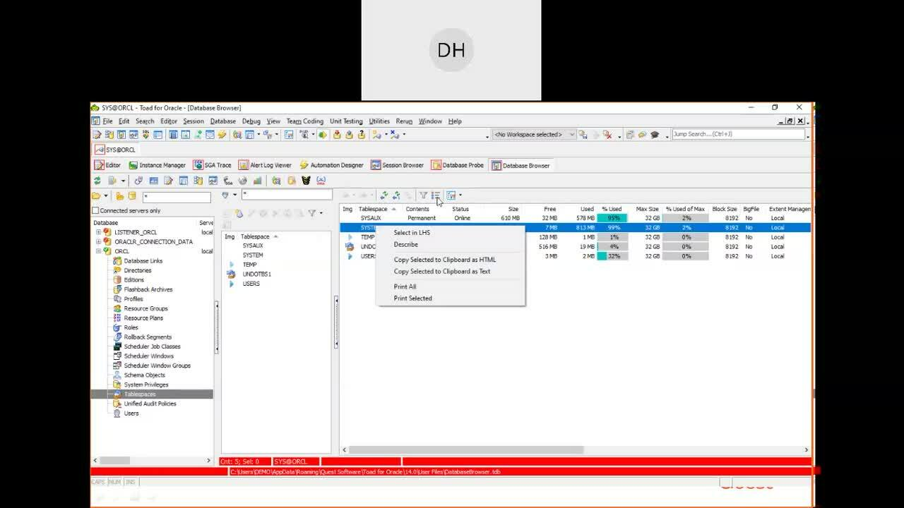 Hotka_Consultant_421_Toad_DBA_Suite_6benefits_video (1)-1