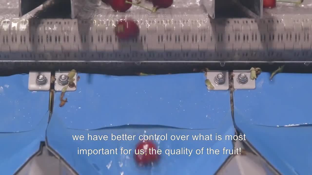 Frigorífico La Hacienda - Compac Cherry Solution