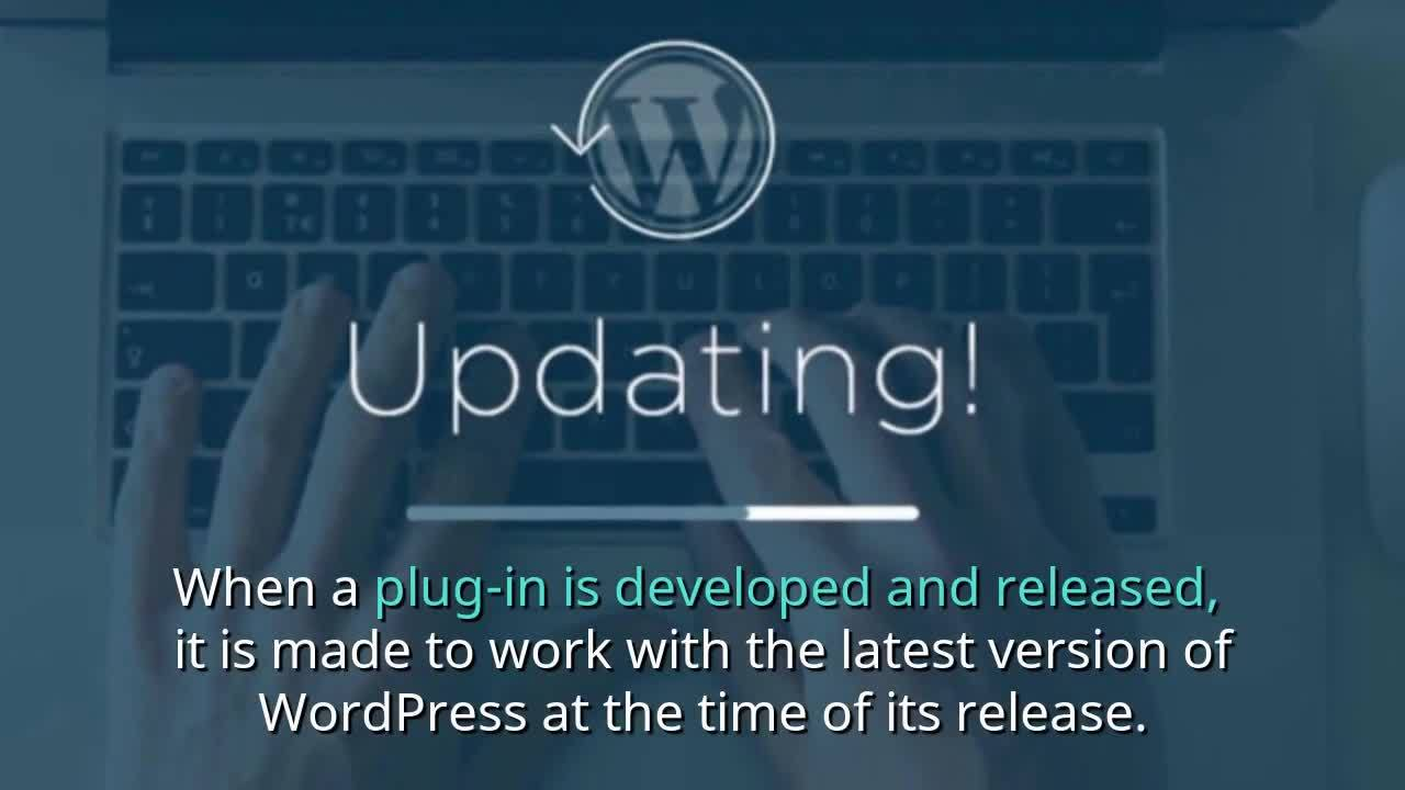 Beacon Digital Marketing - Your Guide On How to Responsibly Use WordPress Plug-ins (2)