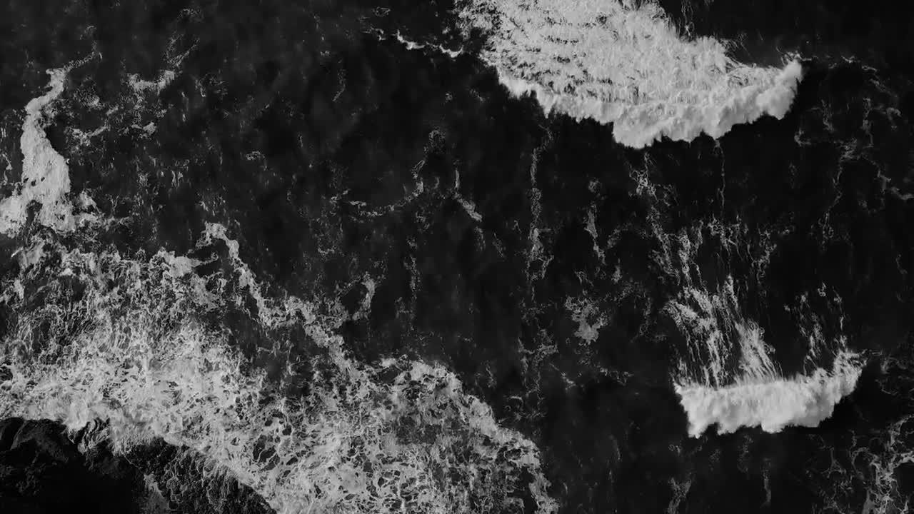 Pexels Videos 1918465_1.mp4