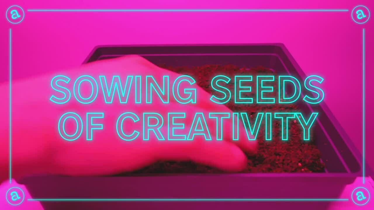 Grow_Bumper_FINAL2